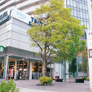 ミニシアター「キノシネマ横浜みなとみらい」オープン 1階にスタバとTSUTAYAの建物