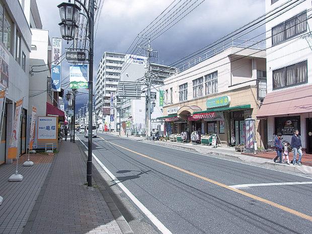 仲宿商店街 【秦野駅エリア】