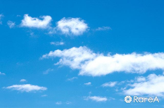 洋光台駅前で「福祉バザー」掘り出し物が見つかる!?衣類、食品、雑貨など【横浜市】