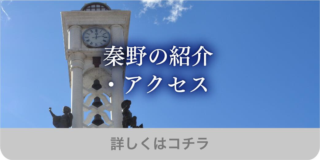 秦野の紹介・アクセス