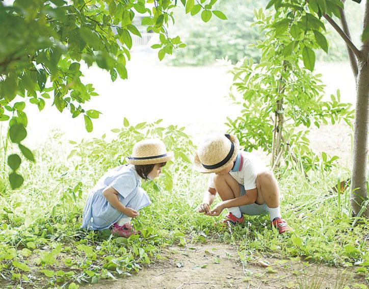 青木幼稚園/未来を創る子どもを育む【藤沢市】