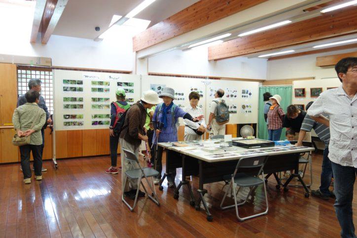 昆虫の面白い生態を知る「谷戸山いきもの展」参加費無料!@座間谷戸山公園