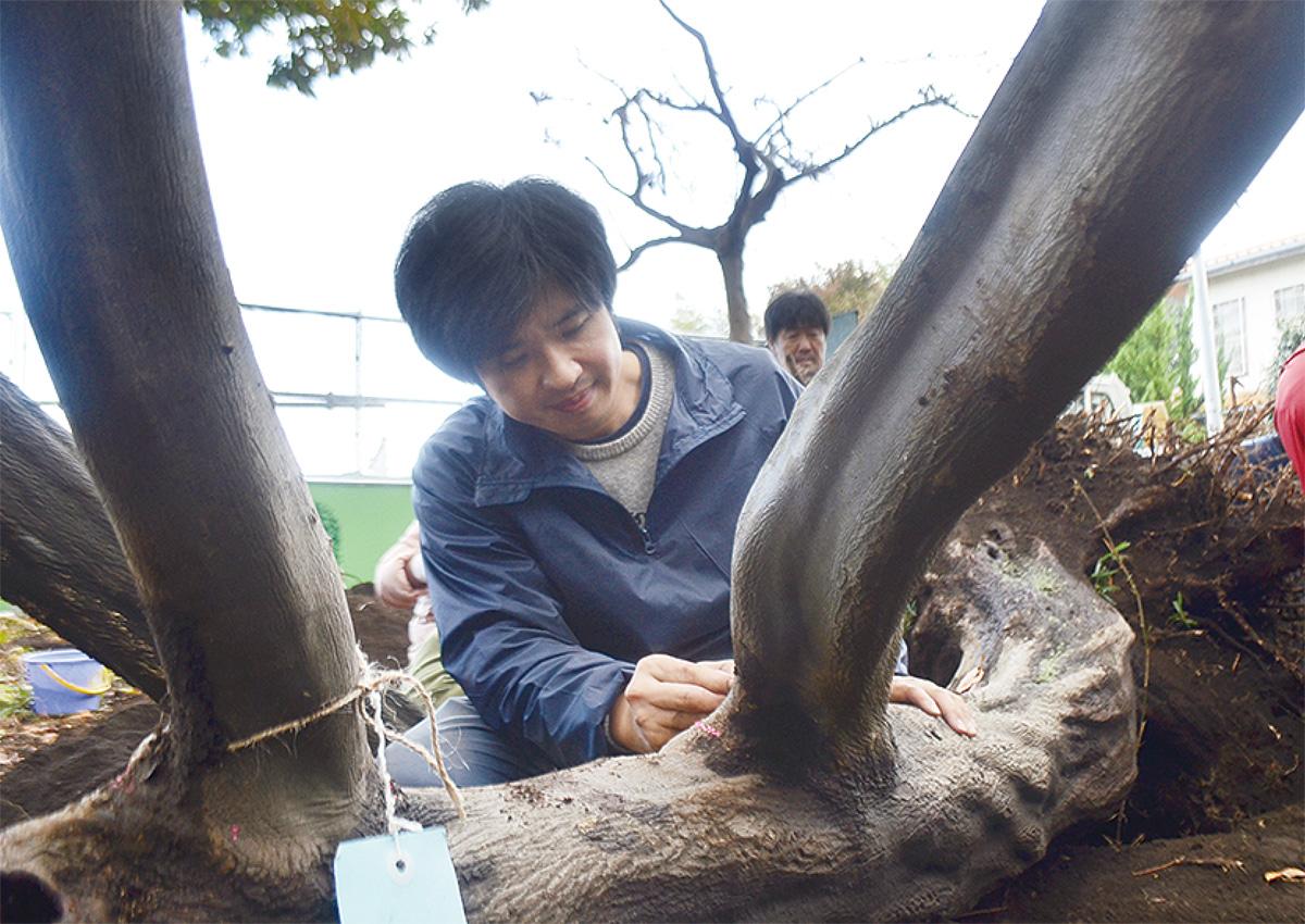 田中彰氏を招へい「版画のムーブメントを起こす!」展示期間中に滞在制作@国際版画美術館(町田市)