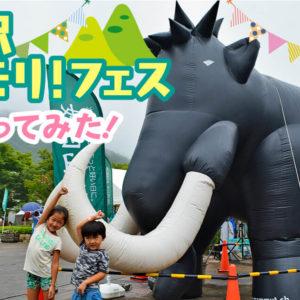 「TANZAWA 山モリ!フェス」親子で体験!秦野戸川公園に子どもたちと行ってみた