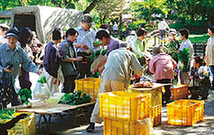 恒例「市民朝市」採れたて野菜など@保土ヶ谷公園ミニ運動広場