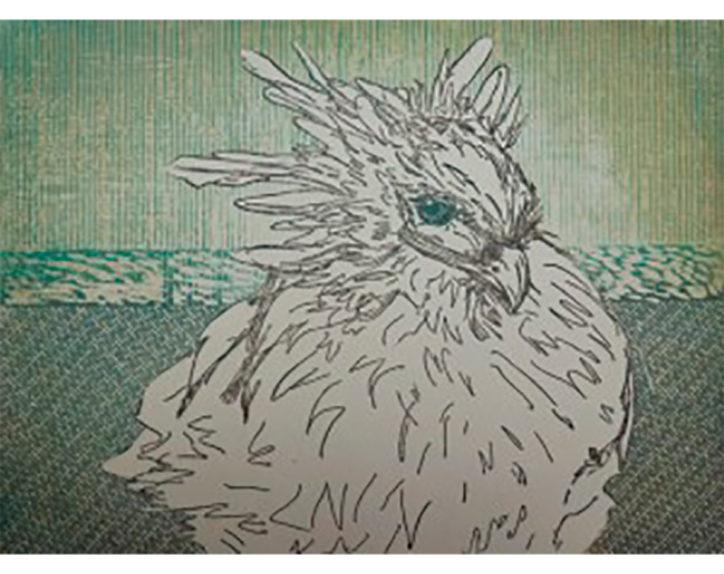 若き版画家の展覧会「地球上最も美しい鳥」描く@フェイアートギャラリー(西区)