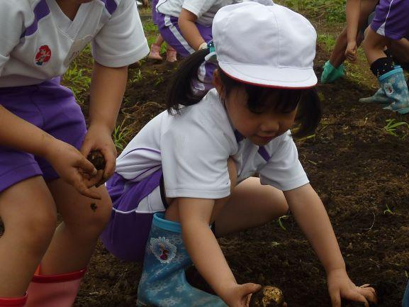 小鮎幼稚園/育む、思いやりの心と生きる力【厚木市】