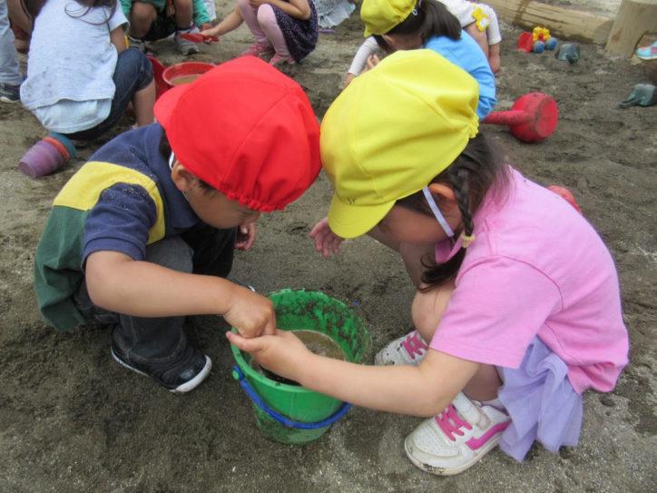 聖マルコ幼稚園/「遊びは学び」モットーに【藤沢市】