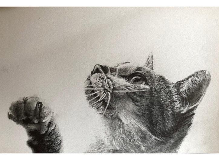 鉛筆画による「白と黒の世界」@蔵まえギャラリー【藤沢市】