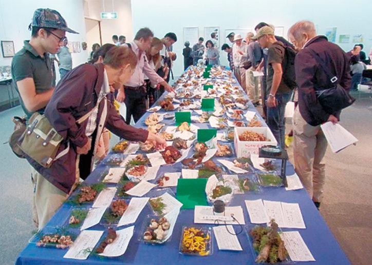 都内最大のきのこ展『野生のきのこを楽しむ』240種を生で見られる!@パルテノン多摩