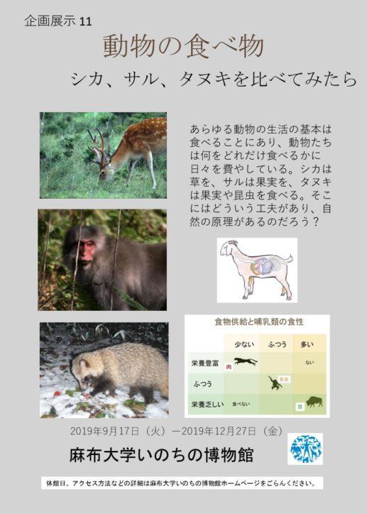 シカ、サル、タヌキを比べてみたら「動物の食べ物」@麻布大学いのちの博物館