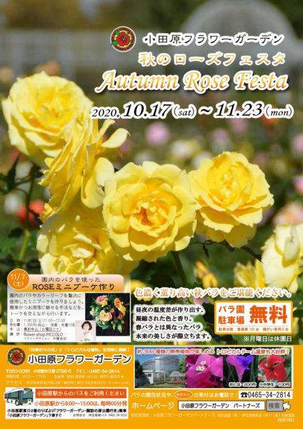 2020年『秋のローズフェスタ』開催中!見頃は10月下旬~11月中旬頃!【小田原フラワーガーデン】