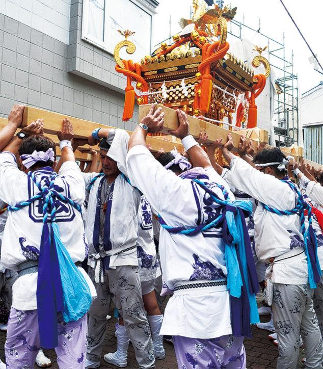 【初開催】三崎港に三浦市内9基のみこし集結「三崎木遣みこしパレード」