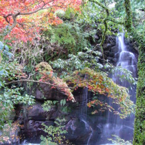 日本の歴史公園100選・湯河原町「万葉公園」に広がる滝×紅葉の世界