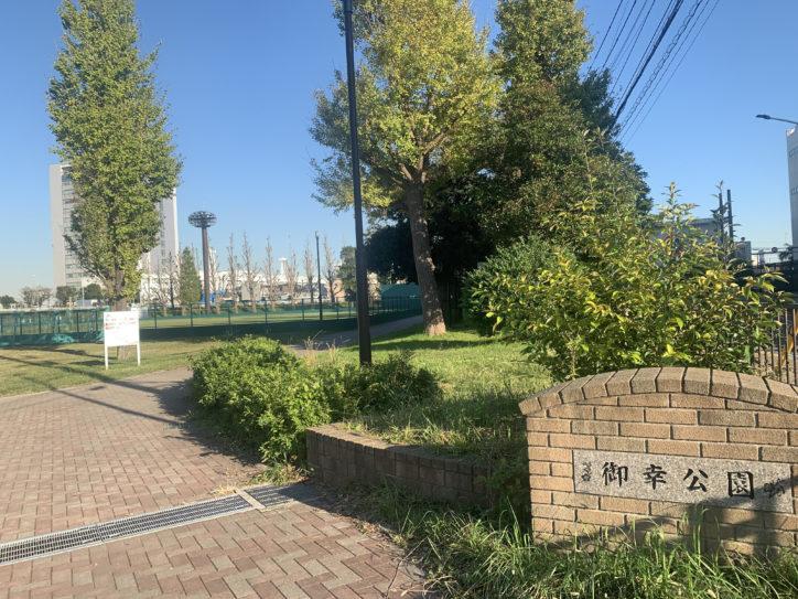 川崎の御幸公園でイチョウ並木を楽しむ 多摩川一望のスポットも