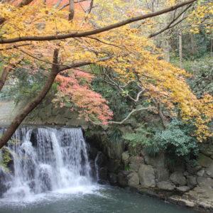 まさかりが淵の滝ともみじが色鮮やかに広がる【横浜・戸塚】