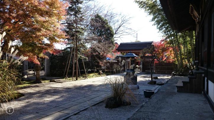 相模原市南区の常福寺で七百年の歴史と紅葉のコラボを楽しむ