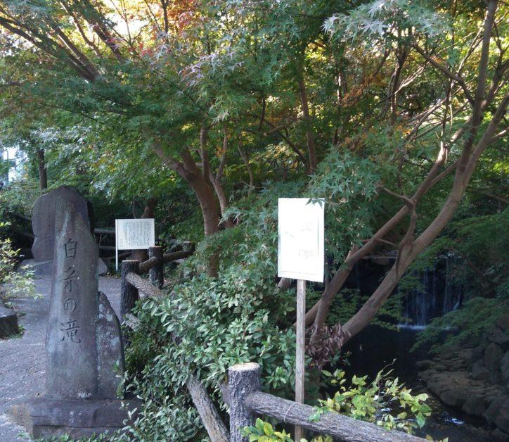 もみじと白糸の滝が楽しめる横浜・旭区の白根公園