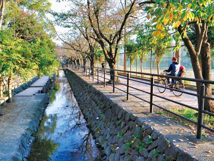 『二ヶ領用水』国の登録記念物へ 川崎市内では2件目