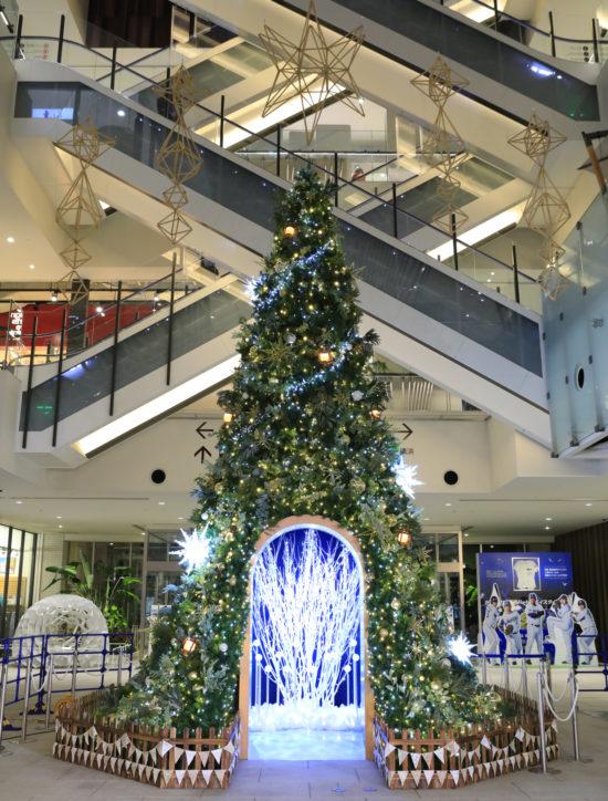 <新体験>MARK IS みなとみらいでクリスマス ツリーのドームに近づきイルミを楽しむ