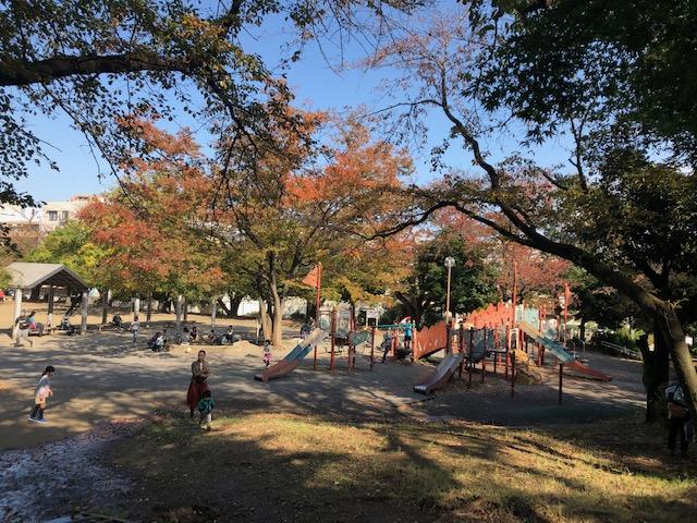 梶ヶ谷第1公園はさくらだけでなく紅葉も楽しめる【川崎市高津区】