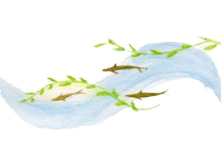 湘南里川づくりフォーラム2020「金目川水系の今後」@東海大学湘南キャンパス
