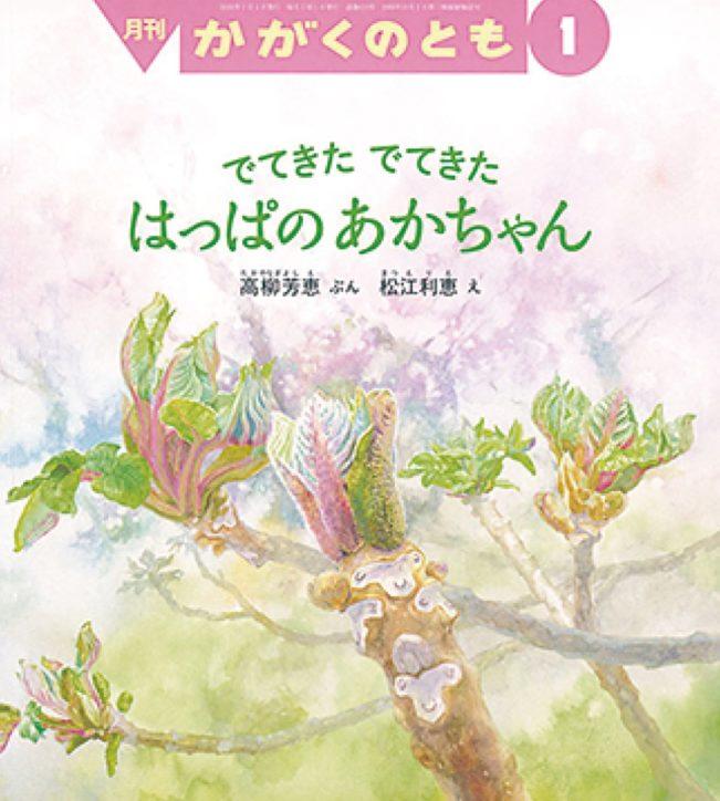 身近な自然を分かりやすく「葉っぱの赤ちゃん」観察会とおはなし【町田市】