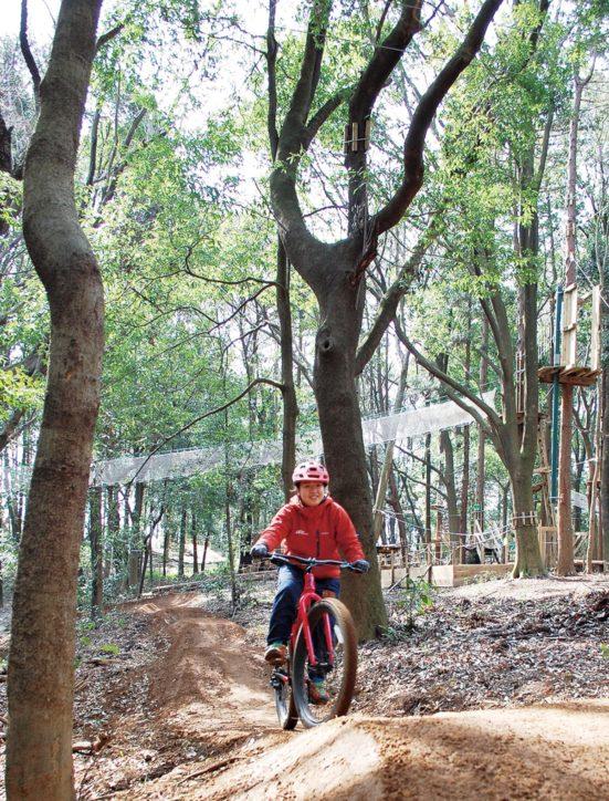 横浜市内初!里山公園内に常設MTBコース「トレイルアドベンチャー・よこはま」オープン