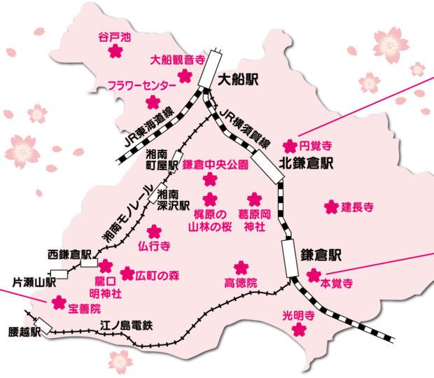 鎌倉「桜の名所MAP」その歴史を紐解く、京都との深いつながりも