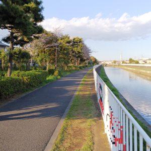 【5㎞/歩いて90分/平坦】藤沢「引地川緑地」遊歩道で桜を愉しむ