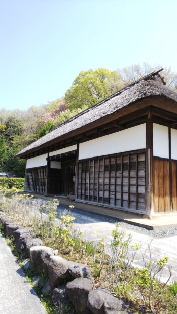 藤沢「新林公園」古民家のある日本原風景に癒され、桜いっぱいの公園を散策