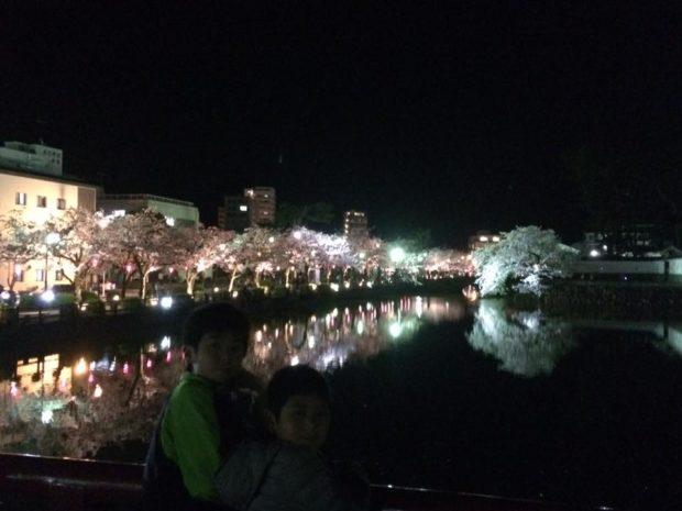 2020年も小田原城桜のライトアップとぼんぼり点灯で夜桜を満喫!