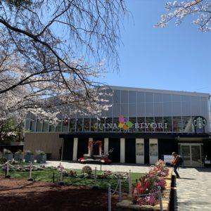 6月1日再開園【新スポットレポ】よみうりランドの新感覚フラワーパーク「HANA・BIYORI/はなびより」