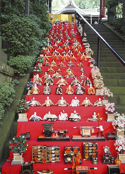 座間神社で「ひな祭り2020」77階段にひな人形約1000体が並ぶ