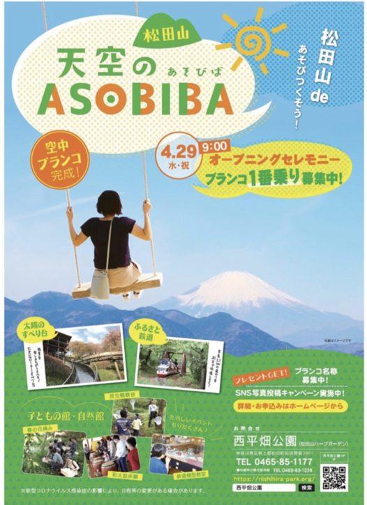 松田町 西平畑公園に新名所誕生!天空のあそびば「空中ぶらんこ」