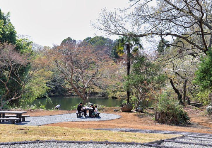 秦野・震生湖畔に芝生広場が登場 ピクニック気分で散策
