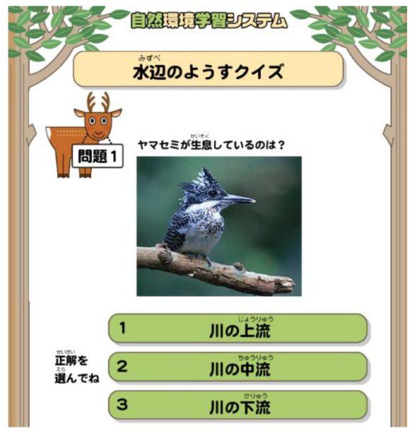 親子で楽しめる「かながわの自然環境クイズ」Webサイトで挑戦しよう!