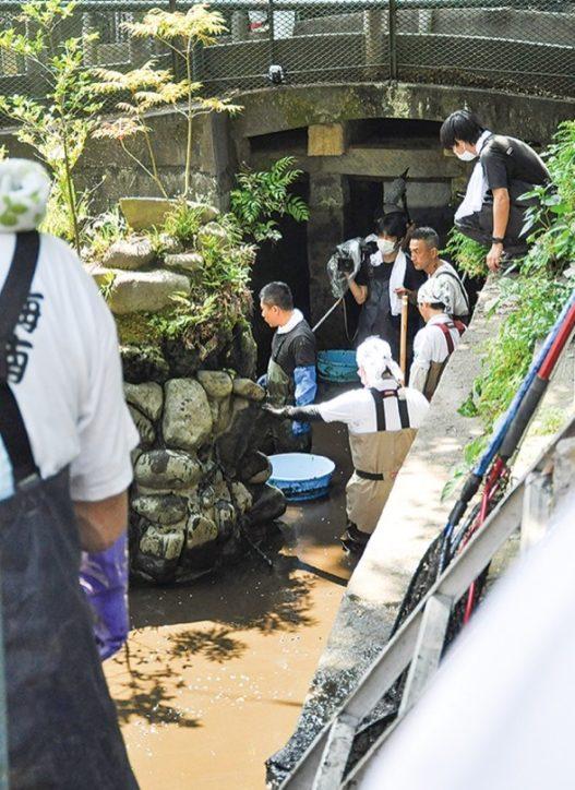 6月28日放送予定『緊急SOS!池の水ぜんぶ抜く大作戦』人気番組で50年ぶりに池を清掃@三崎海南神社