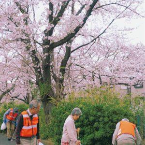 地元の宝守ろう  町内会 麻生川沿いで清掃【2020年4月3日号】