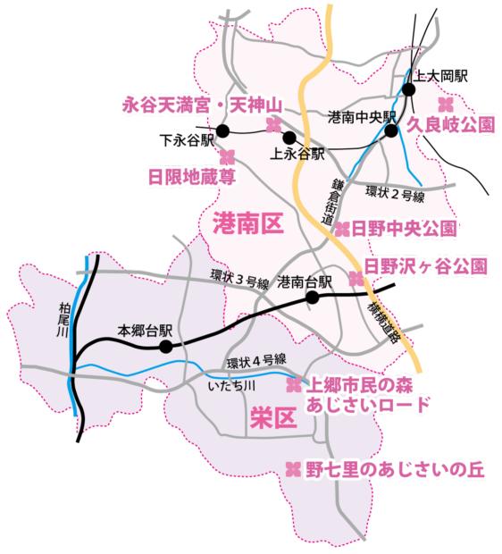 『あじさい巡り 』港南区・栄区のお出かけスポット