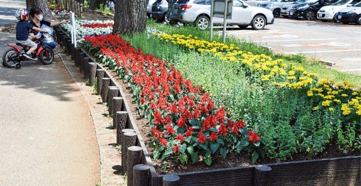 「リトアニア」の国旗を3色の花で表現@平塚市総合公園