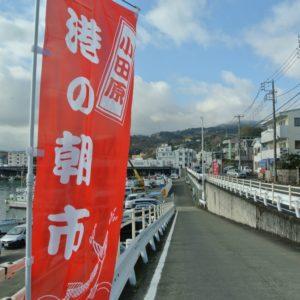小田原漁港「港の朝市」通常再開へ!感染予防徹底で7月25日から実施