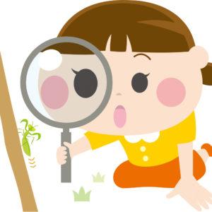 あいかわ公園で少人数対象の「自然観察ガイド」開催<厚木市>
