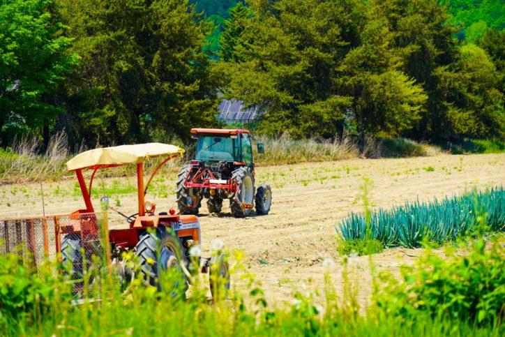 女性に農業体験 10月に全3回、無料で<海老名市・県立かながわ農業アカデミー>