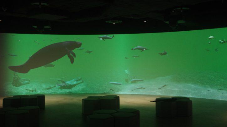 【内覧レポ】川崎市内初の水族館!「カワスイ 川崎水族館」2020年7月17日(金)開業