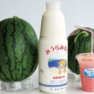 地場産果物と牛乳で1杯<三崎港うらりマルシェ>