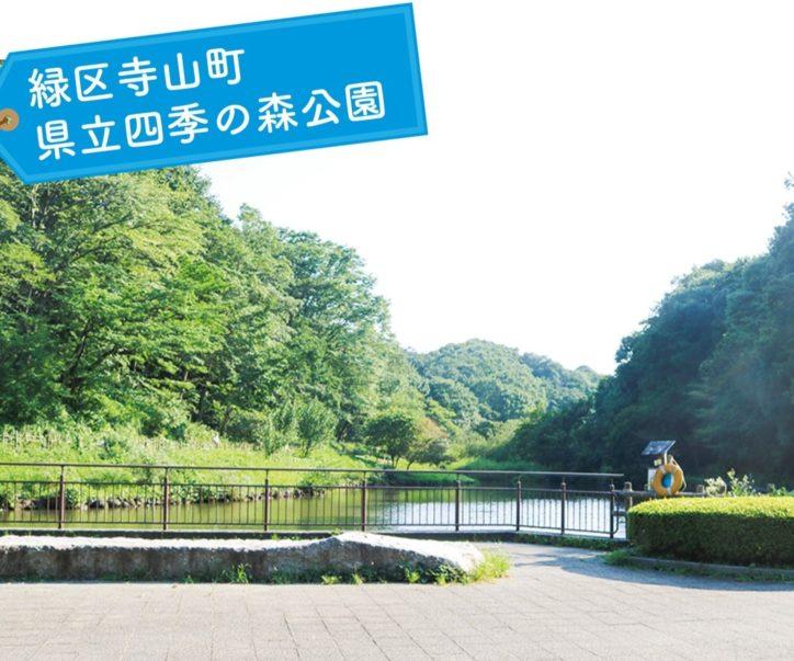 【写真で楽しむ横浜小旅行】横浜市緑区寺山町『県立四季の森公園』