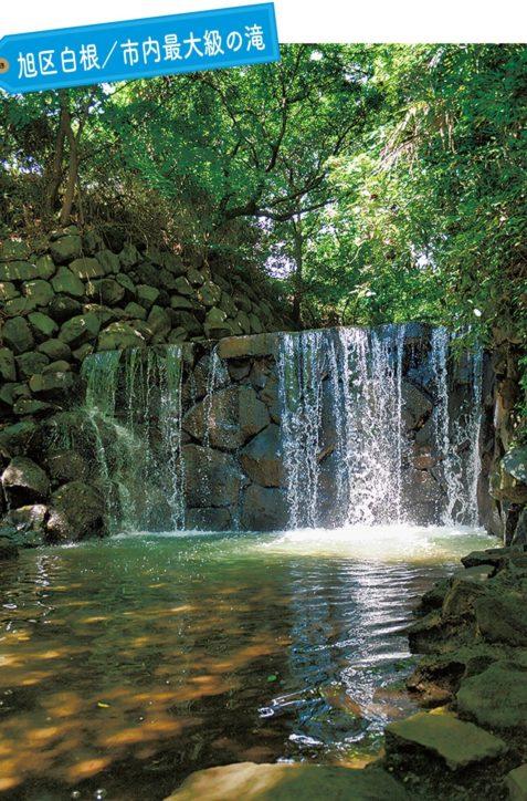 【写真で楽しむ横浜小旅行】旭区白根『白糸の滝』