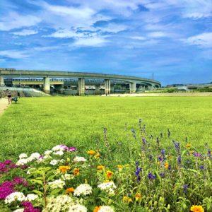 【歩いて行こう】今田遊水地の芝生広場 休日に親子でのんびり