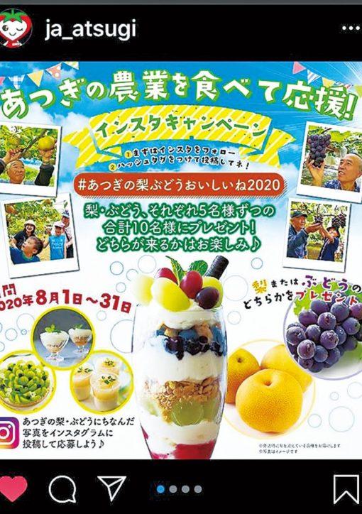 「あつぎの農業を食べて応援!〜インスタキャンペーン〜」開催中!特産物プレゼント